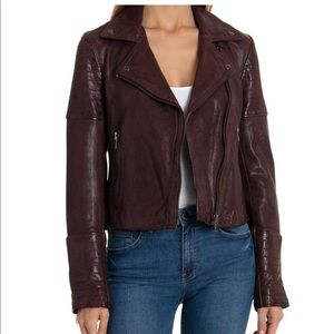 NWT SOLDOUT Burgundy Leather Moto Jacket Coat Med